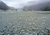 Alaska - Glacier Bay NP: glacier icefield - photo by A.Walkinshaw