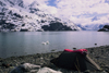 Alaska - Glacier bay - bivouac on a bank of Johns Hopkins inlet - photo by E.Petitalot