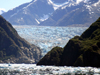 Alaska's Inside Passage - Tracy Arm Fjord : South Sawyer Glacier (photo by Robert Ziff)