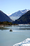 Alaska's Inside Passage - Tracy Arm Fjord : South Sawyer Glacier - approaching  (photo by Robert Ziff)