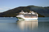 Alaska's Inside Passage - Tracy Arm Fjord : Cruise ship Sapphire Princess entering the fjord (photo by Robert Ziff)