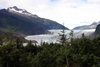 Alaska - Juneau: Mendenhall Glacier (photo by Robert Ziff)