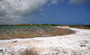 Cove Pond, West End Village, Anguilla: salty waters surrounded by natural white foam - photo by M.Torres