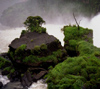 Argentina - Iguazu Falls (Misiones province): in the mist - photo by Ruben Bittermann