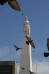Argentina - Buenos Aires: Plaza de Mayo - Obelisk and doves - obelisco (photo by N.Cabana)