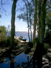 Australia - Great Sandy National Park (Queensland): Lake Cootharaba  - photo by Luca Dal Bo