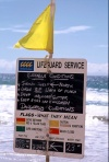Australia - Gold Coast (Queensland): weather report and flag meanings - photo by  Picture Tasmania/Steve Lovegrove