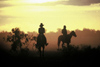 Cattle Station (NT): stockmen at sunset (photo by  Picture Tasmania/Steve Lovegrove)
