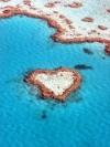 Australia - Great Barrier Reef (Queensland): Heart reef - Unesco world heritage site  - photo by Luca Dal Bo