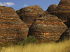580 Western Australia - Purnululu National Park: the Bungle Bungles - beehive-like mounds - photo by M.Samper)