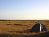 586 Western Australia - backpackers' tent - photo by M.Samper)