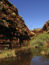 588 Western Australia - Karijini National Park: river and gorge - photo by M.Samper)
