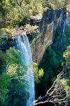 Australia - Morton National Park (NSW): Fitzroy falls - off the main road from the Highlands to Kangaroo Valley - main attraction - photo by S.Lovegrove