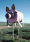 Australia - Eyre Peninsula (SA): letter box in shape of pig - photo by R.Eime