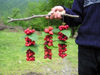 Azerbaijan - Quba / Guba: selling berries by the road (photo by F.MacLachlan)