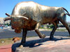 Azerbaijan - Hovsani settlement - Absheron peninsula: golden bull statue on a round-about - öküz - photo by N.Mahmudova