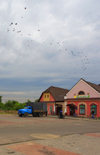 Mir, Karelicy raion, Hrodna Voblast, Belarus: shops and birds - photo by A.Dnieprowsky