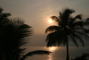 Belize - Seine Bight: postcard morning - palms and sunrise - photo by Charles Palacio
