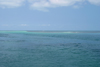 Belize / Belice- Seine Bight: tropical water - Caribbean sea - photo by Charles Palacio