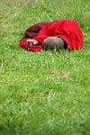 Bhutan, Paro: Monk on grass outside Paro Dzong with cellphone - photo by J.Pemberton