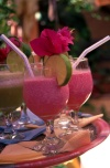 Brazil / Brasil - Porto de Galinhas, Pernambuco: exotic cocktails with bougainvillea leaves - tropical drinks / cocktails com folhas de buganvilea - photo by F.Rigaud