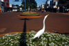 Brazil / Brasil - Dourados: heron - Marcelino Pires avenue / gar�a (photo by Marta Alves)