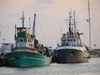 Nesebar: fishing fleet - ships - trawlers (photo by J.Kaman)