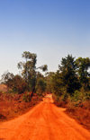 Rutana province, Burundi: African dirt road - photo by M.Torres