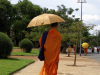 Cambodia / Cambodje - Phnom Penh: monk with umbrella (photo by M.Samper)