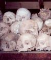 Cambodia / Cambodje - Phnom Penh: Choeung Ek killing fields - silent witnesses of the Khmer Rouge (photo by M.Torres)