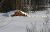 Canada / Kanada - Saskatchewan: pile of logs covered in snow - photo by M.Duffy