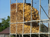 Wainfleet, Ontario, Canada / Kanada: corn storage - agriculture - photo by R.Grove