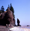 Hopewell Rocks, Bay of Fundy, New Brunswick, Canada: beach with rock formations - photo by A.Bartel