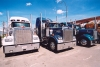 Canada / Kanada - Calgary, Alberta: Kenworth trucks - photo by M.Torres