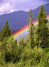 Canada / Kanada - BC: forest and rainbow - photo by G.Friedman
