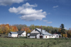 Hartland, New Brunswick, Canada: maple trees in autumn colors and white farmhouses - photo by C.Lovell