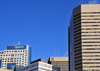 Winnipeg, Manitoba, Canada: Downtown skyscrapers - left to right: TD Centre, Royal Bank Building, Richardson Building, Commodity Exchange - photo by M.Torres