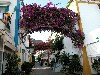 Canary Islands - Gran Canaria - Puerto Mogán: arcos y flores / arches and flowers (photo by Angel Hernandez)