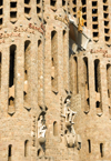 Barcelona, Catalonia: Sagrada Familia cathedral - detail of the spires - Temple Expiatori de la Sagrada Familia - photo by B.Henry
