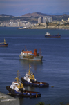 Valpara�so, Chile: large ocean going cargo ships and tug boats in the harbour - photo by C.Lovell