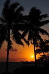 Moroni, Grande Comore / Ngazidja, Comoros islands: coconut trees at sunset - view from the Corniche - photo by M.Torres