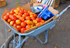 Moroni, Grande Comore / Ngazidja, Comoros islands: tomatoes and scale on a wheelbarrow - market scene - Dashe - photo by M.Torres