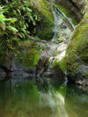 Cook Islands - Rarotonga island: Wigmore's waterfall, gushing  in the rainforest - photo by B.Goode