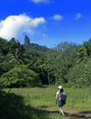 Cook Islands - Rarotonga island: trekking inland - photo by B.Goode