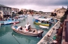 Corsica / Corse - Centuri-Port: fishing boat in the port (photo by M.Torres)
