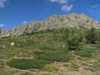 Corsica - Col de Vergio (border of Haute-Corse and Corse du Sud): mountains in Central Corsica - 1477 m (photo by J.Kaman)