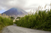 Costa Rica - Arenal Volcano and road - Cerro de los Guatusos, Cano Negro National park - photo by B.Cain