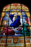 San José, Costa Rica: Metropolitan Cathedral - stained glass - Virgin Mary - photo by M.Torres