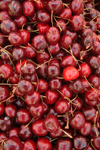 Croatia - Dubrovnik: cherries at the market - photo by J.Banks
