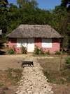 Cuba - Holguín province - pink house and pig - Bohío - photo by G.Friedman
